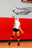 006_DHS_JV_Volleyball_8_22_15