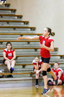 005_DMS_Volleyball