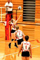 TVS Varsity Volleyball vs mississinawa Valley 8-30-16-15