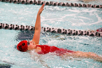 DHS Swimming 1-14-17-18