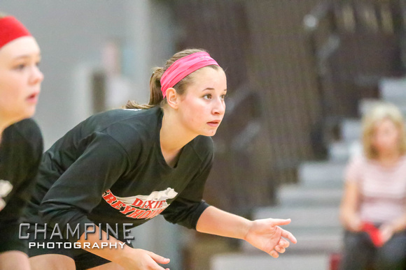 003_DHS_Varsity_Volleyball_8_22_15